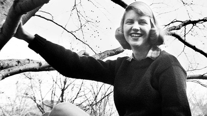 A photo of Sylvia Plath sitting in a tree, taken while she was a student at Smith College