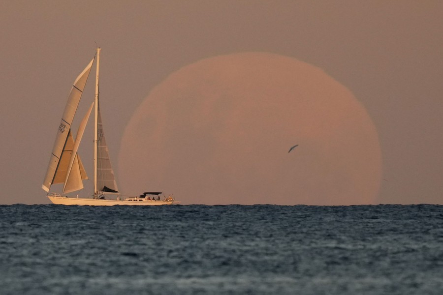 A yacht sails past as the moon rises in the distance.