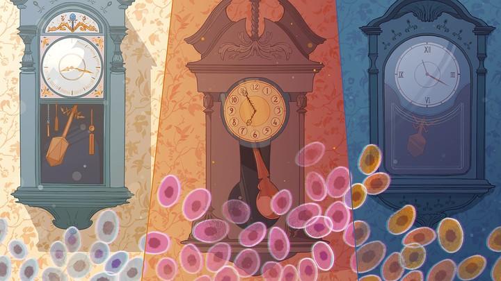 Three illustrated clocks with viruses overlaid.