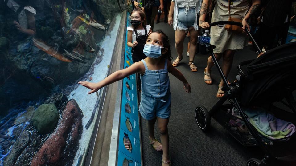 A masked girl touches an aquarium.