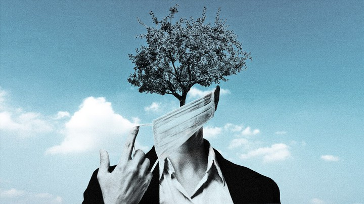 Illustration of a person who has a tree for a face wearing a mask.