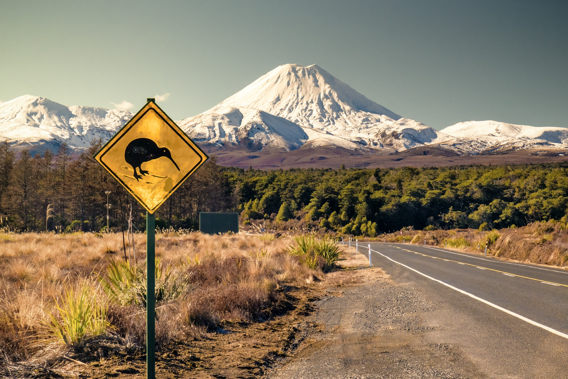 A kiwi crossing sign in a mountain valley