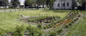 An urban garden for collecting stormwater runoff.