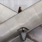 A woman rides an escalator.
