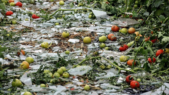 Broken glass and vegetables on the ground
