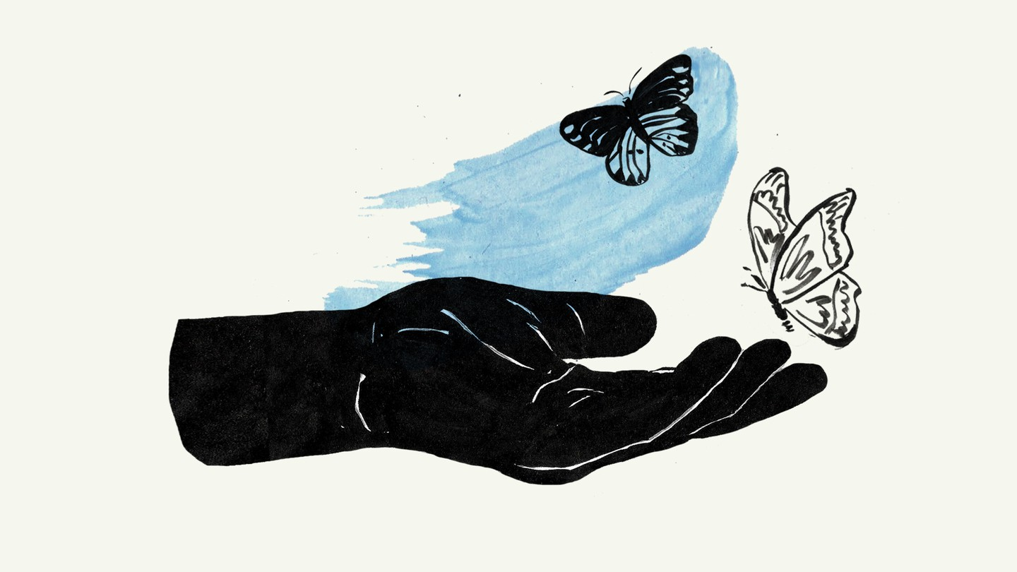 An illustrated hand catching a butterfly