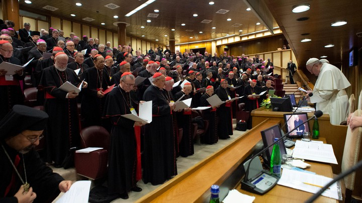 Pope Francis is seen at the Catholic Church's conference on child sexual abuse.