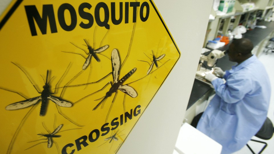 """A scientist works at a microscope next to a """"mosquito crossing"""" sign."""