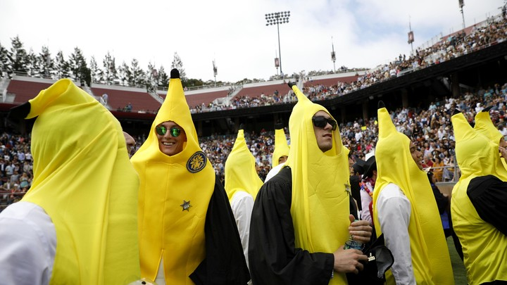 Students wearing banana costumes at Stanford University's commencement ceremony
