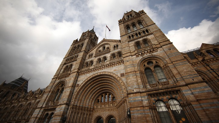 The front of London's Natural History Museum