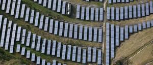 photo: An array of solar panels in Oakland, California.
