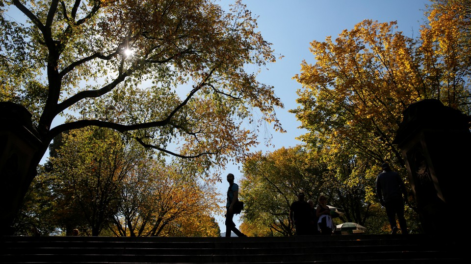 A silhouetted man walking in a park