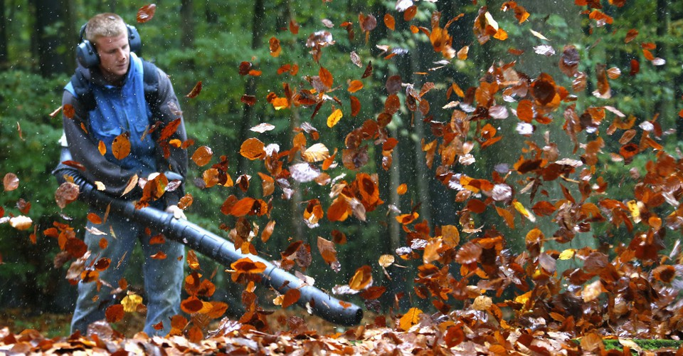 The Case Against Leaf Blowers Citylab