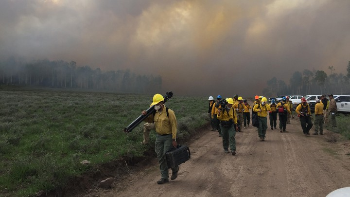 Fire scientists walk down a dirt road with a smoke-filled sky in the background.