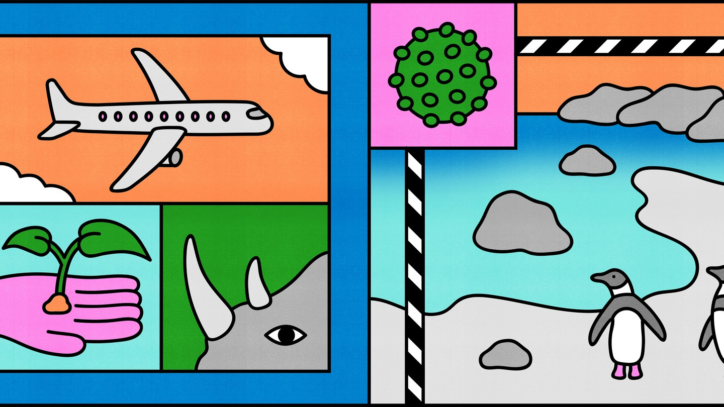 A tiled illustration of a plane, a plant, a rhino, penguins, and a coronavirus