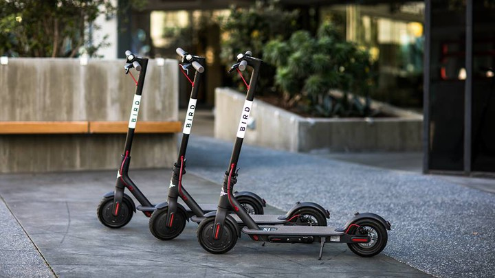 Three Bird electric scooters lined up on a sidewalk