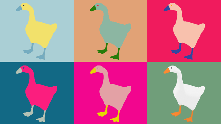 Multicolored illustrations of geese.