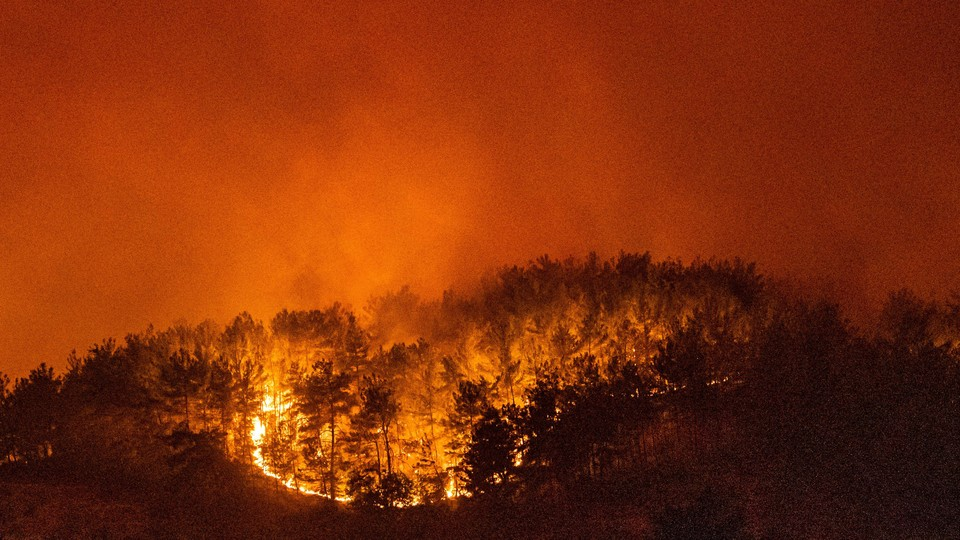 A forest burning in Turkey on August 6, 2021.