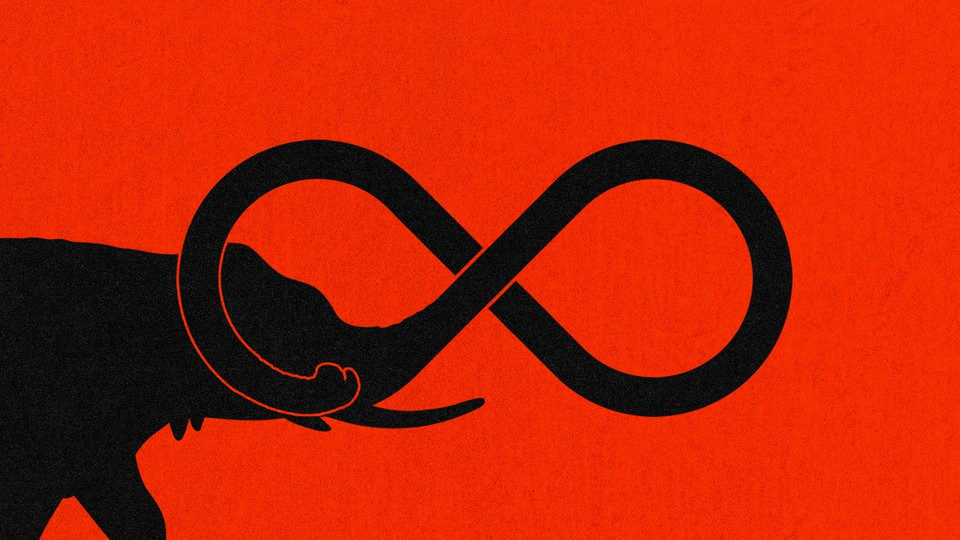 An illustration of an elephant with its trunk twisting into an infinity loop.