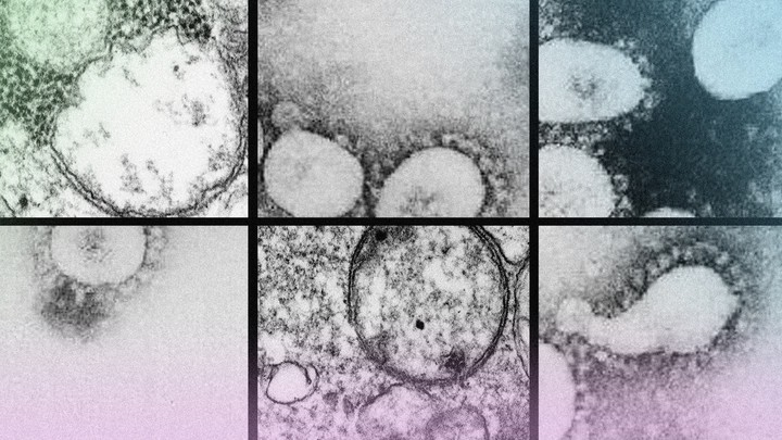 The coronavirus's constantly evolving nature is a stark reminder that the entire world is in this crisis together