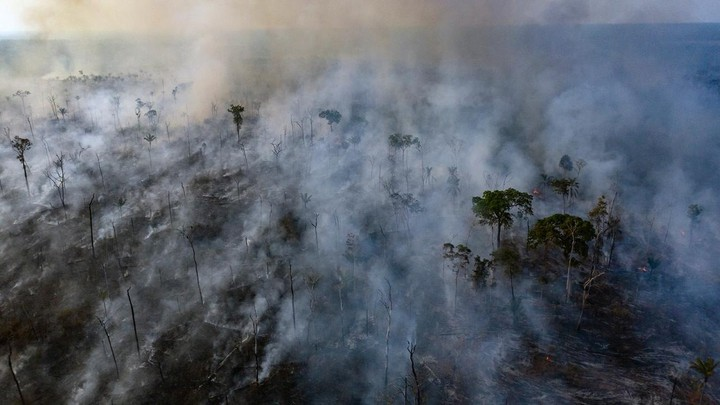 Smoke rises from forest fires in the Amazon rain forest in Brazil.