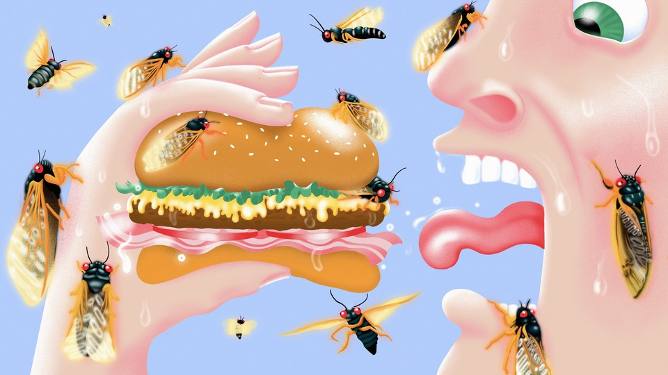 An illustration of a man about to eat a burger. Both he and the burger are covered in cicadas.