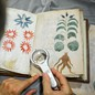 A man holds a magnifying glass over the Voynich Manuscript.