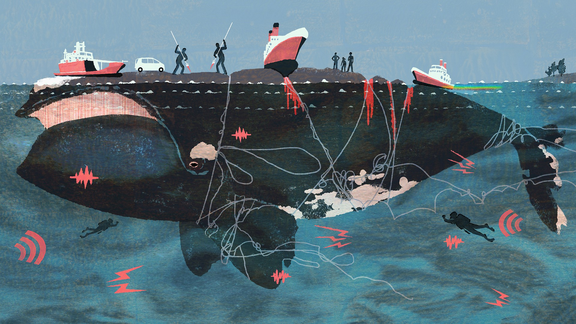 An illustration of a whale covered in bruises and rope