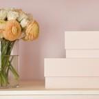 Marie Kondo's line of storage boxes.