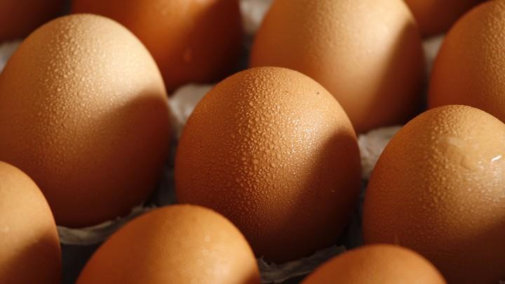 A closeup of glistening brown eggs in a carton