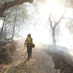 A firefighter pulls a hose down a wooded trail.