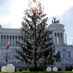 A photo of a Christmas tree in downtown Rome.
