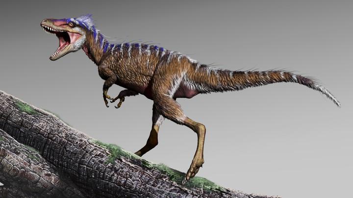 Moros, a newly discovered tyrannosaur