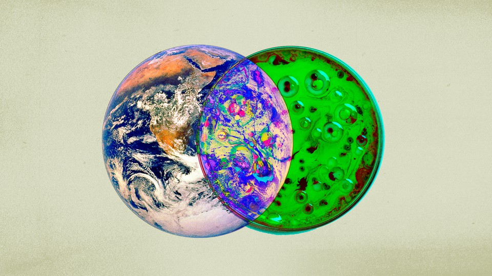 An illustration of an image of a petri dish and Earth overlapping in a Venn diagram.