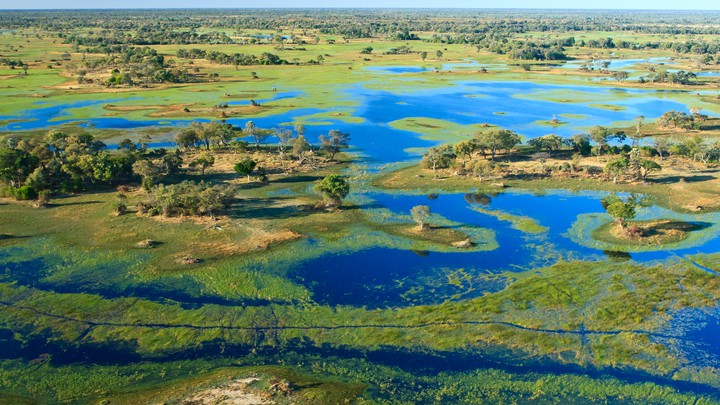 The Okavango Delta, in northern Botswana