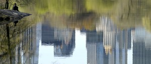 photo: The Manhattan skyline is reflected in a lake in New York City's Central Park