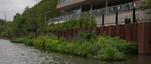 A manmade island full of plants floats on a canal, with a large building behind it.