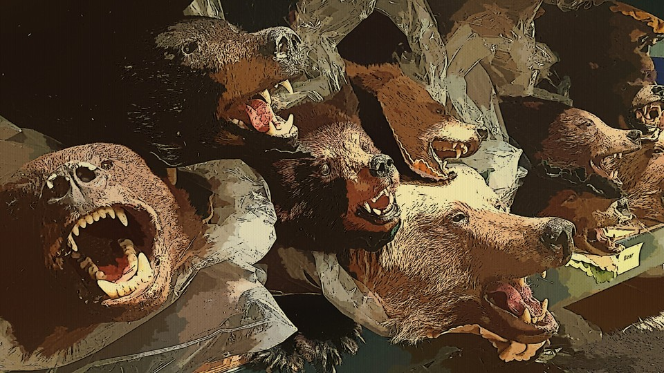 An illustrated pile of stuffed bear heads