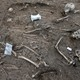 Partial skeleton remains from an ancient burial site