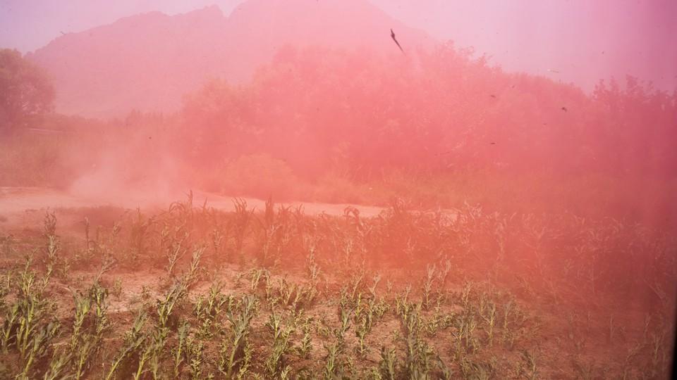 Pink smoke in a field