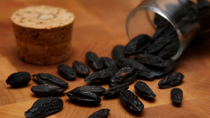 The Tonka Bean: An Ingredient So Good It Has to Be Illegal - The Atlantic