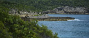 The coast of Vieques island off Puerto Rico.
