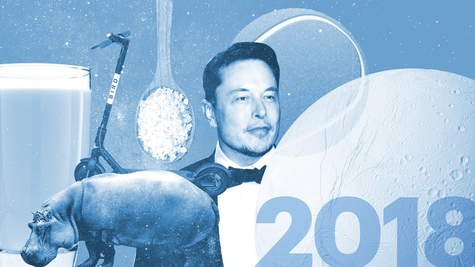 A glass of beer, a Bird scooter, a spoonful of salt crystals, a hippo, Elon Musk, a tennis ball, a moon, and the number 2018
