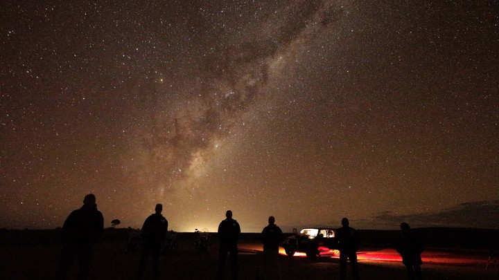 People looking up at the night sky