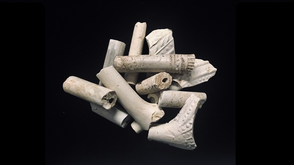 Several clay pipe fragments