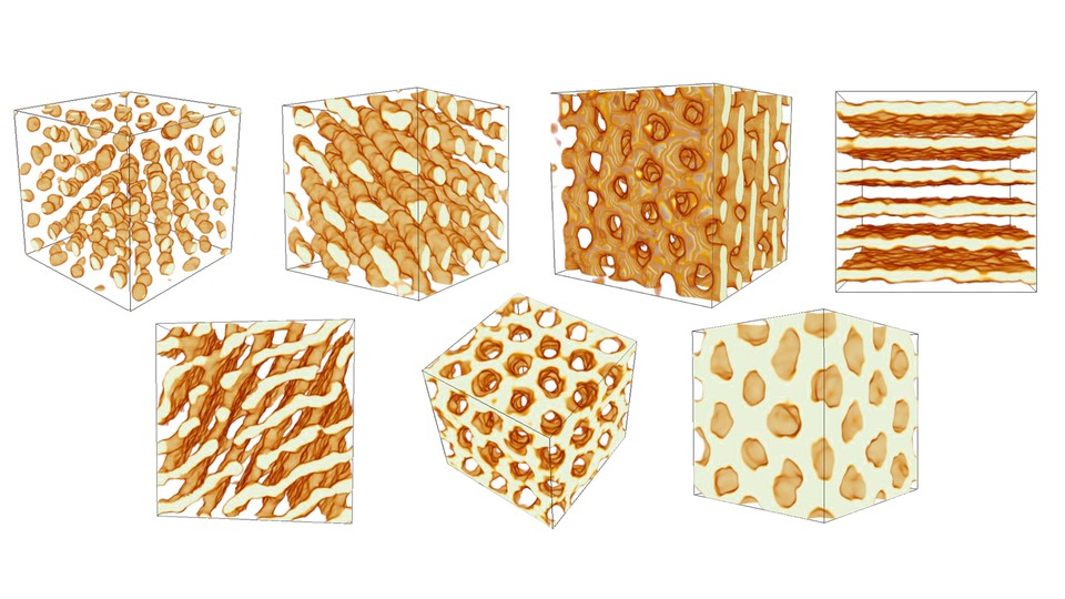 3-D visualizations of pasta shapes