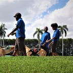 Men leading dogs to race at Palm Beach Kennel Club.