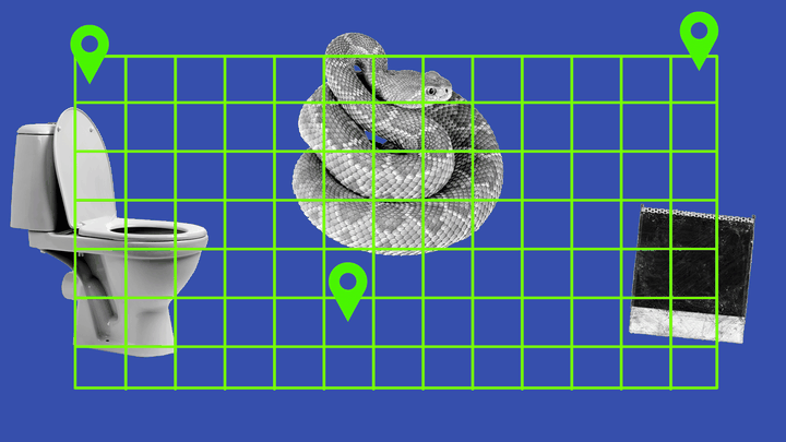A toilet, a snake, and a Polaroid on a map grid