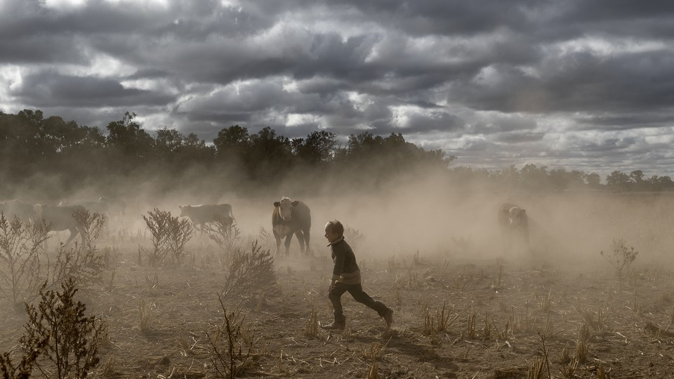 Harry Taylor plays on the dust bowl his family farm has become during the drought, in the Central Western region of New South Wales, Australia.