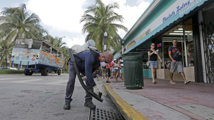 A mosquito control inspector sprays a chemical mist into a storm drain in Miami Beach, Florida, on August 23, 2016.